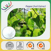 Natural 98% piperine black pepper extract,piper nigrum piperine extract powder,10% black pepper extract