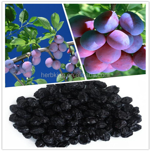 100% Dark Plum Fruit/Fructus Mume P.E./Smoked Plum extract