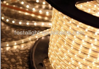 110/220V SMD 3528 Strip Light, 120-piece LED/m