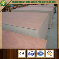 cheap plywood sheet waterproof plywood price 18mm 4x8