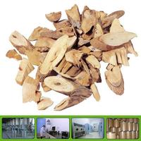 GMP factory supply 100% natural angelica/dong quai extract