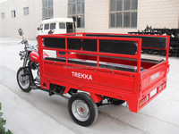 Hot Sale Electric Pedal Van Tricycle for Cargo 200CC Engine for Passenger and Cargo