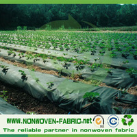 Direct Manufacturer Nonwoven Landscape / Ground Cover Weed Control Fabric
