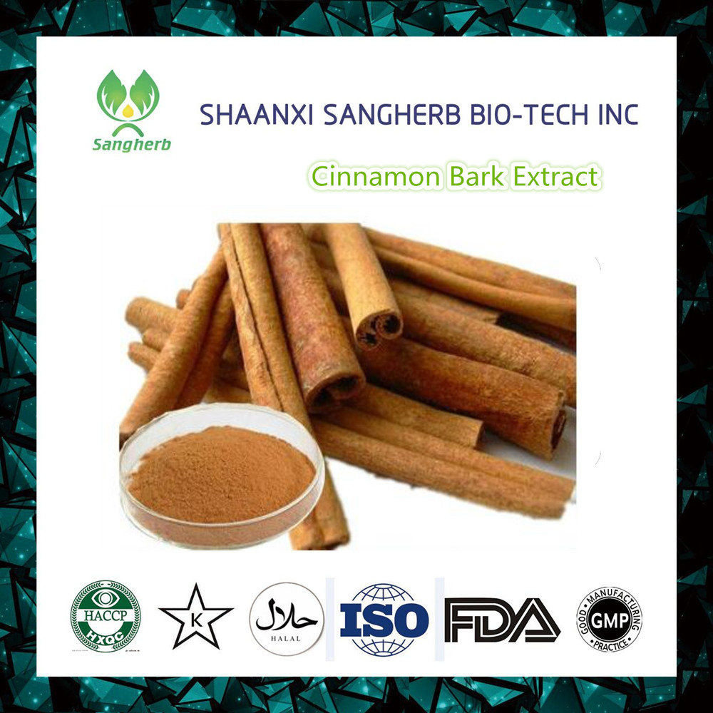 Hot selling Cinnamon Bark Extract Powder 20% Polyphenols By UV