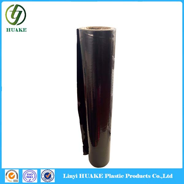 Hot Sale Dental x-Ray Film Price, High Quality Dental x-Ray Film