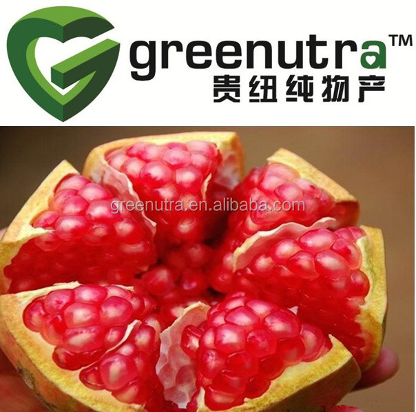 High quality pomegranate plants extract