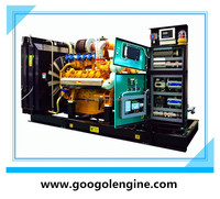 200kW Googol Biogas Generator Set with Marathon Alternator