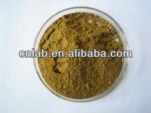 100% natural medicine,food grade Achyranthes Bidentata Extract