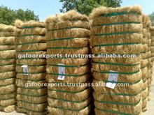 COCONUT Coir Mattress Fiber TOP QUALITY