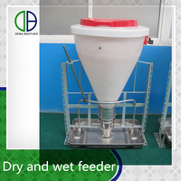 pig feeders pig farm use dry and wet feeder