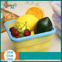 Clear Silicone Decorative Pet Food Containers