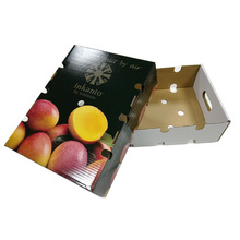 Elegant Simple and High Quality recyclable paper fruit packaging carton box
