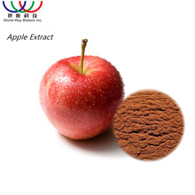 Factory Supply Apple Peel Extract/Apple Skin Extract 95% Phlorizin