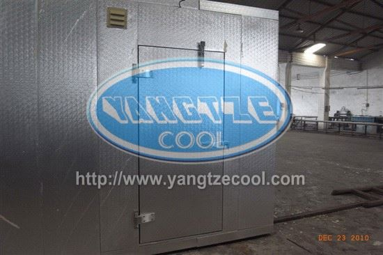 Meat and Fish Processing Cold Storage,pu panel cold room