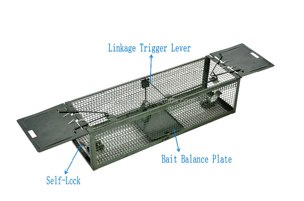 Double doors rat cage trap, live catch rat traps, humane rat trap cage---Amazon