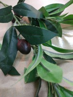 CHY600917 Cheap price olive tree leaves,olive tree branches for olive tree decoration