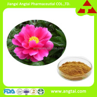 GMP supply Chinese herb extract Chinese herbaceous peony with Total glucosides of paeonia