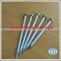 Common nail(professional manufacture)