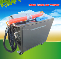 dry and wet steam car wash machine price/vapor auto detailing supplies wholesale