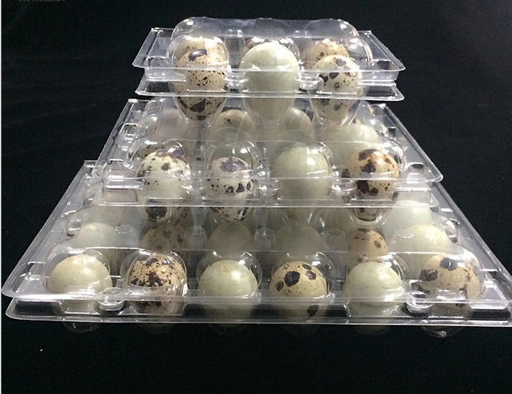 Blister proce type plastic material quail egg tray / quail egg crates for sale