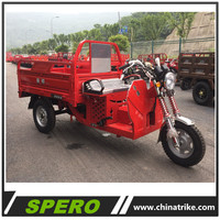 HOT Sale 150CC Air Cooled Cheap Price Small Cargo Tricycle for Sale