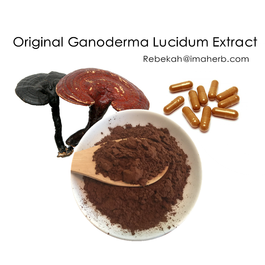 GMP Factory supply original ganoderma lucidum extract