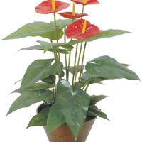 Artificial Small Bonsai Tree Artificial Anthurium