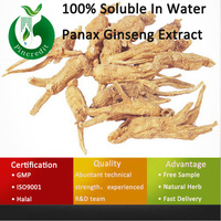 Ginseng Powder Extract/Ginseng Extract Powder/100% Soluble In Water Panax Ginseng Extract