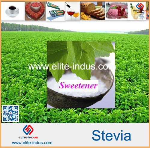 stevia sugar substitute that has no calories