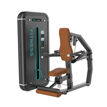 DFT Fitness Equipment Seated Dip/ Strength Equipment / Seated Dip
