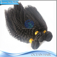Factory Price Wholesale High Quality 100% Virgin Afro Kinky Human Hair Bulk For Braiding
