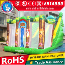 Small indoor Inflatable castle slide