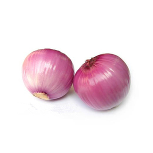 Fresh Onion Export To Dubai
