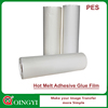 Famous Wholesale hot melt adhesive film for embroidery patch