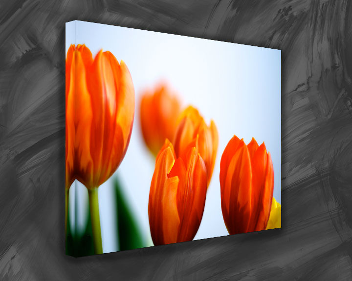 100% Polyester Inkjet Canvas Print Flower Oil Painting