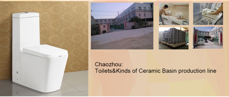 Water Marks Certificate One Piece Wash Down Ceramic Water Closet