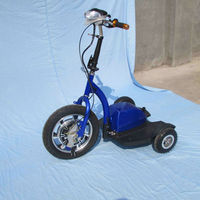 125 kg cargo electric bike/2014 new design zappy 3 electric scooter
