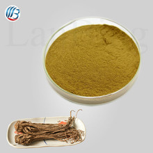 GMP standard bulk pure natural high quality dong quai extract