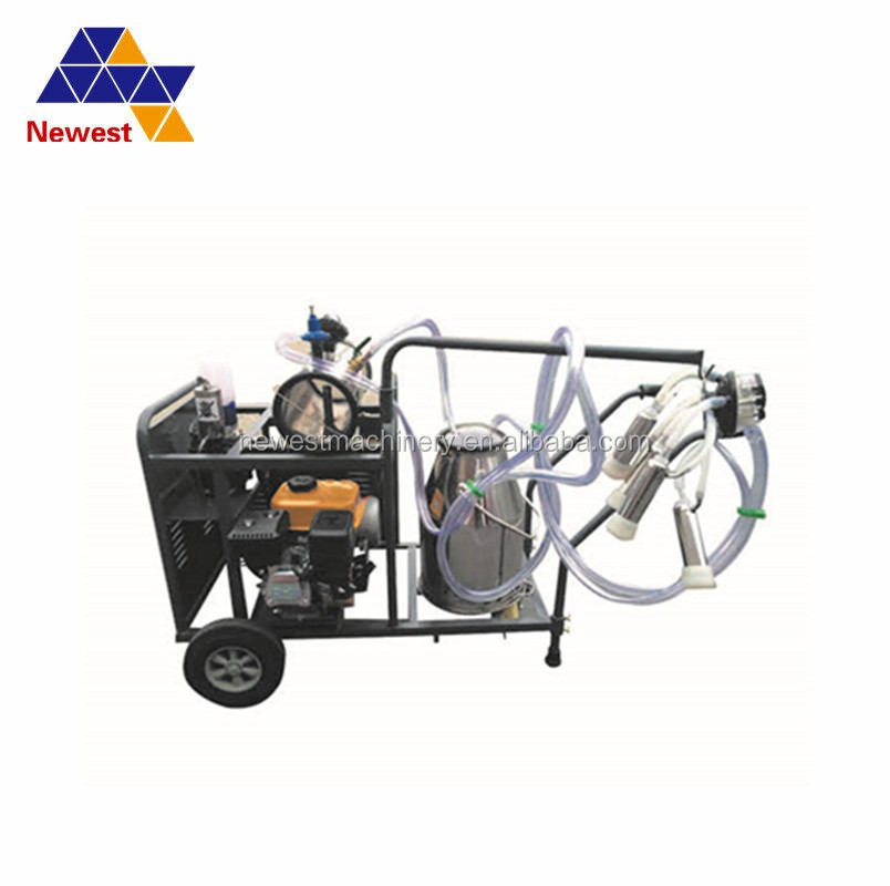 High capacity dairy farm use piston double bucket milking machine cow milker for men