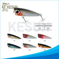 China Custom Fishing Lures Top Water Walking Popper Bait