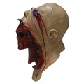 The highest selling character party Fancy Dress Ideal Classic Cosplay Latex Mask for Halloween props