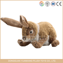 Custom really south africa farming fur rabbit