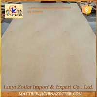 Gold Supplier China Plywood Company