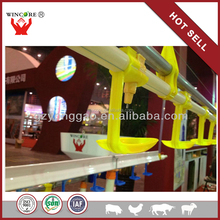 chicken farm construction nipple drinking system poultry house