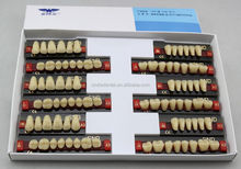 Two Layer Acrylic Resin Teeth low price dental acrylic resin teeth