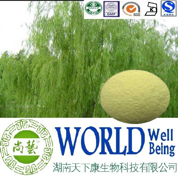 Hot sale White willow extract/salicin 98%/White willow bark powder/Anti-rheumatism plant extract