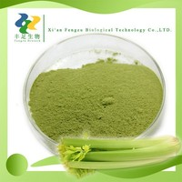 Natural celery juice powder,celery extract