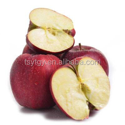 Common cultivation type and apple type fresh apples fruit