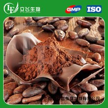 High Quality Food Ingredient Alkalized Cocoa Powder
