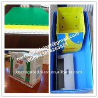 Fruit Packing PP Plastic Box For